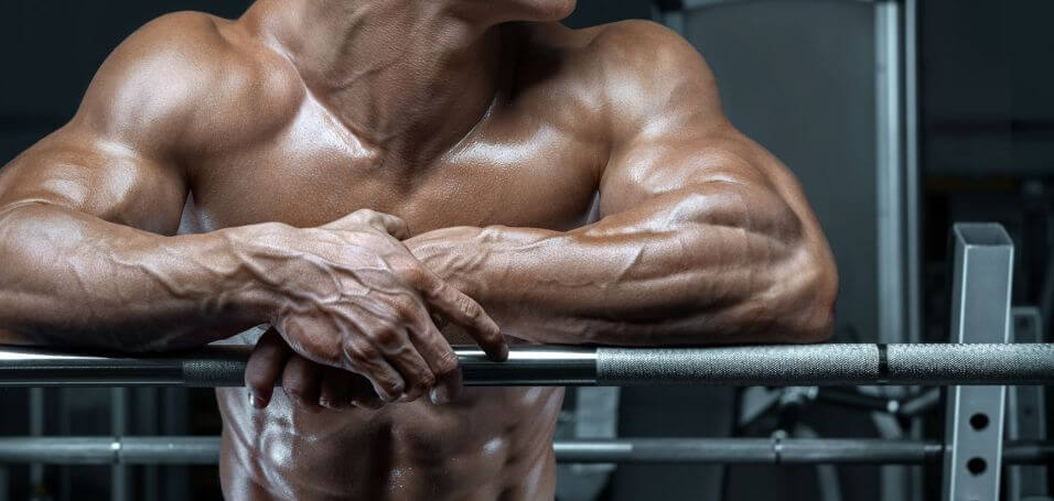 Do Legal Steroids Really Work?